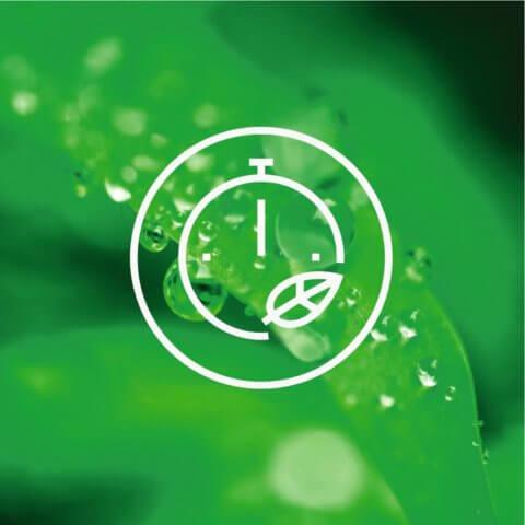 AEG A+++ -30% 8kg 1600p/m auruprogrammiga pesumasin L7FEE68S